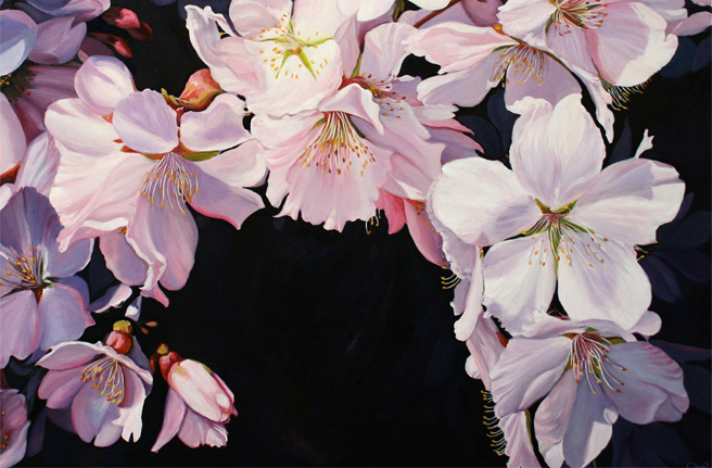 Cherry Blossom Spray stickie website