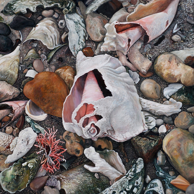 "Marie Cameron_Shell Grave_ 2010_ oil on canvas_48""x48"" 656"