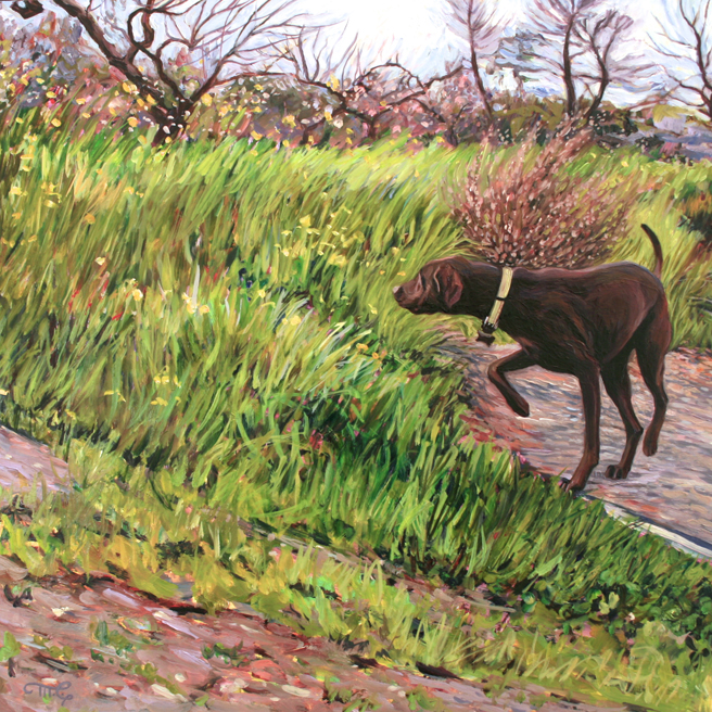 Retreiver in the Orchard - Marie Cameron -  oil on board -12x12 inches - 2016