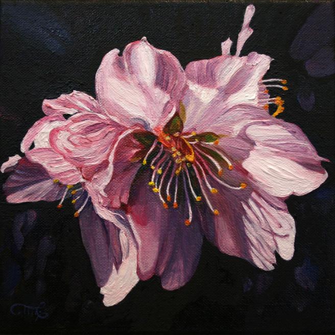 Marie Cameron Cherry Blossom (A Little) Demure 2012