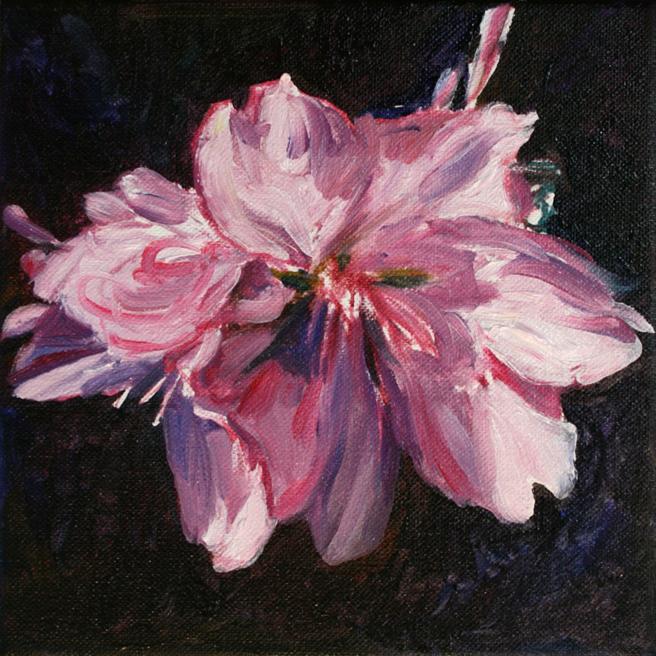 Marie Cameron Cherry Blossom in progress B 2012