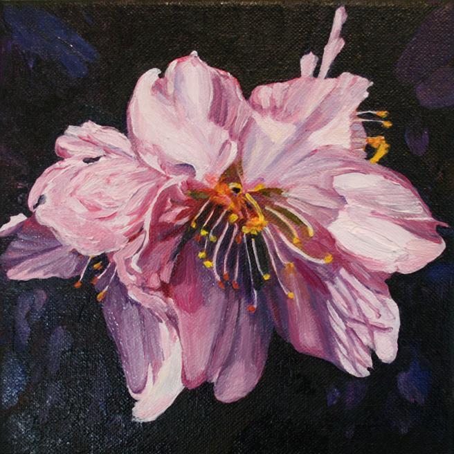 Marie Cameron Cherry Blossom in progress 2012 G