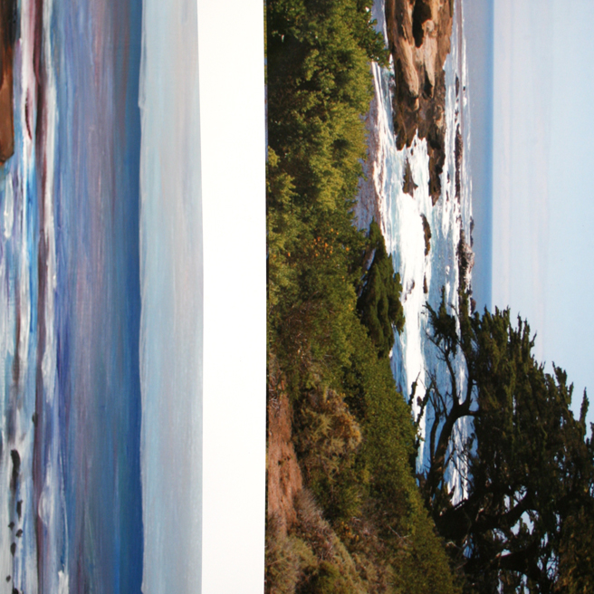 Marie Cameron Monterey Cypress Commission Continues SIde Photo 2012
