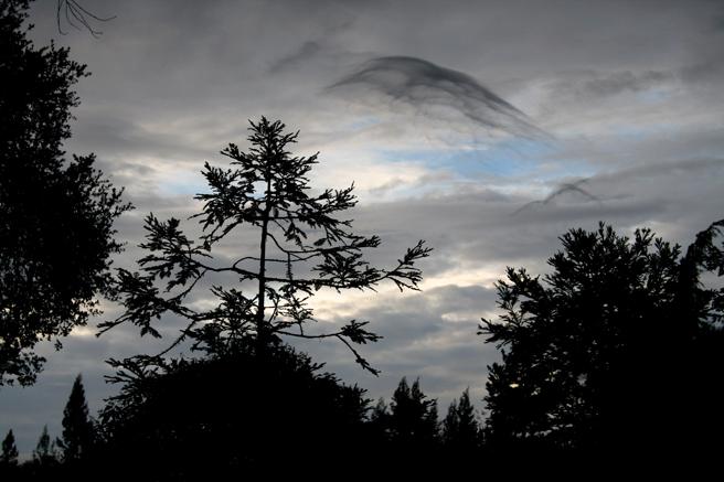 Clouds- dark veils Los Gatos Photo Marie Cameron 2012