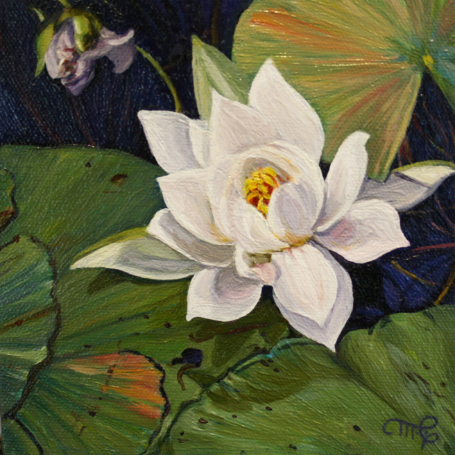 Marie Cameron Desert Lake Pond Lily I 2012 oil on canvas 6x6 commission