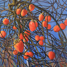Marie Cameron Persimmon Tangle 2012 oil on canvas 6 x6 sm