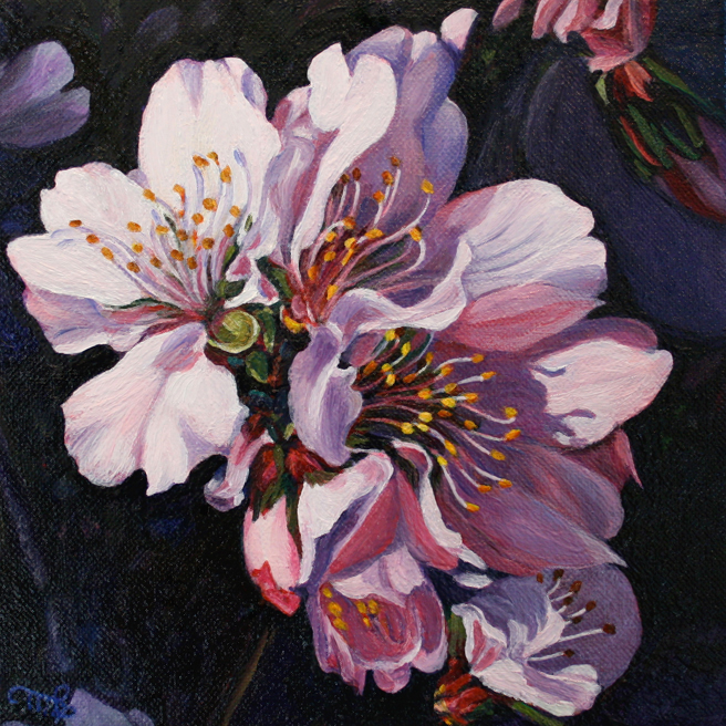 Marie Cameron Cherry Blossom Cluster 2012