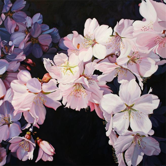 """Marie Cameron Cherry Blossom Spray 2012 oil on canvas 24"""" x 24"""""""