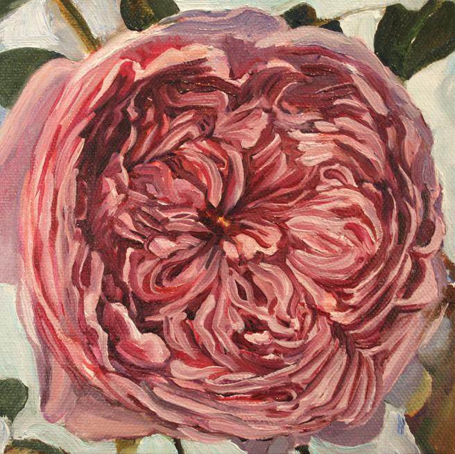 Rose Mandala in Progress 6 Marie Cameron 2013