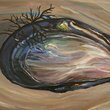 Mussel Shell I by Marie Cameron 2013 oil on canvas 5x7in sm