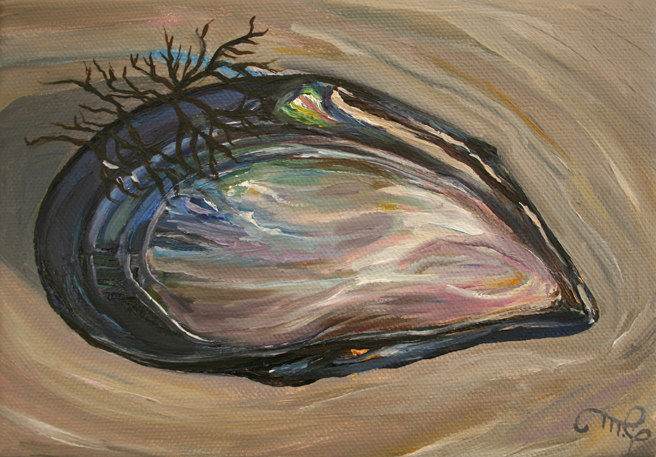 "Mussel Shell I by Marie Cameron 2013 oil on canvas 5"" x7"""