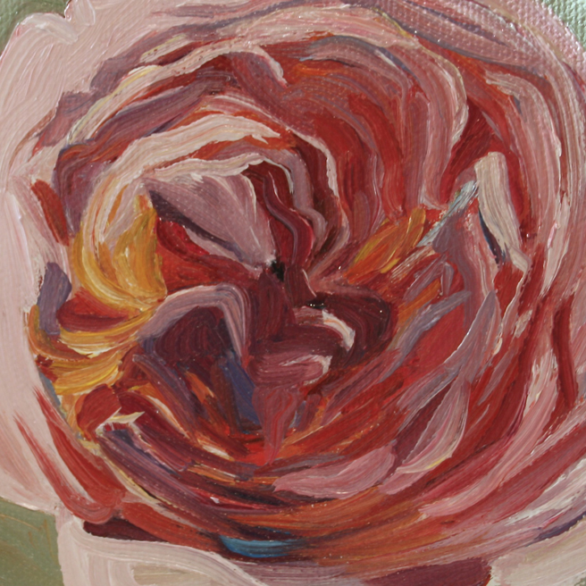 """Rose Petals I by Marie Cameron 2013 oil on canvas 4"""" x4"""""""