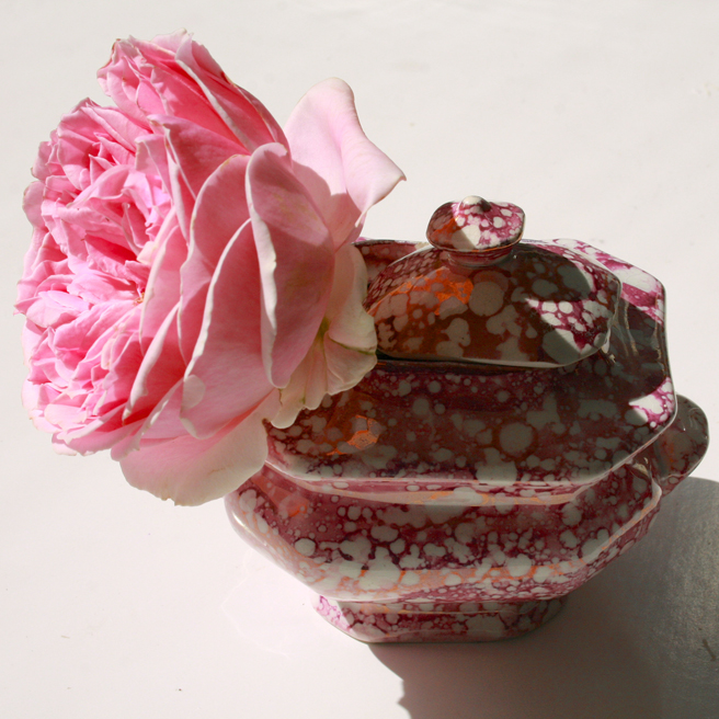 Pink Rose and Splatter Lusterware - Sugar, Flower on th side Marie Cameron 2013