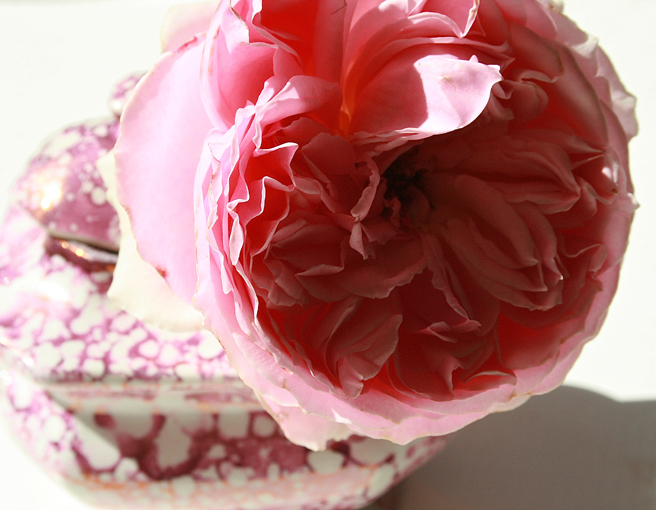 Pink Rose and Splatter Lusterware - close Marie Cameron 2013