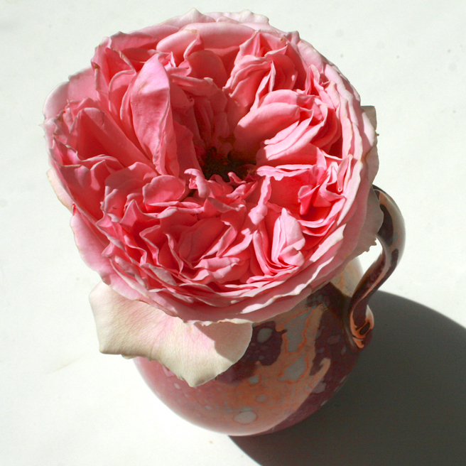 Pink Rose and Splatter Lusterware - pitcher from above Marie Cameron 2013