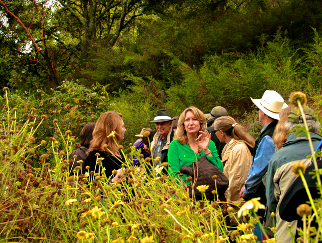 Eco Feast at Love Apple Farm - long yellow peppers - quided tour with Cynthia Sandberg- Marie Cameron 2013