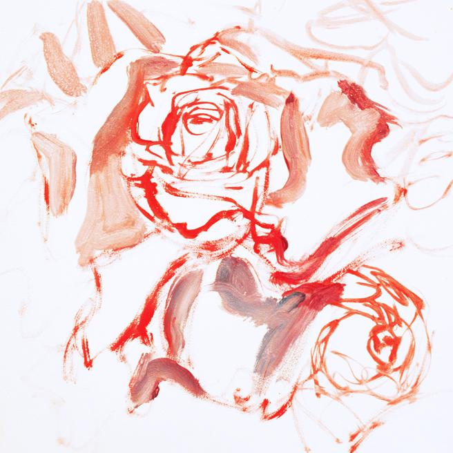 Hybrid Tea Rose I - Marie Cameron 2013 1