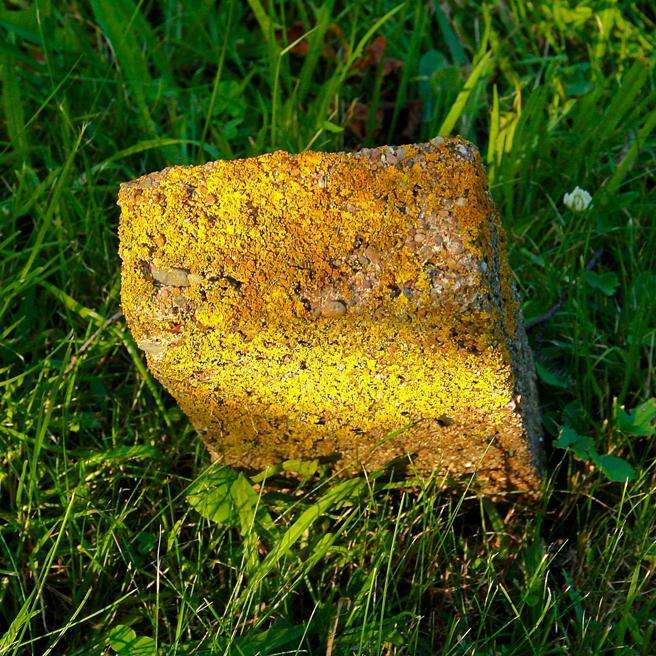 Lichen Covered Concrete Grave Marker - Blomidon Cemetery - Marie Cameron 2013