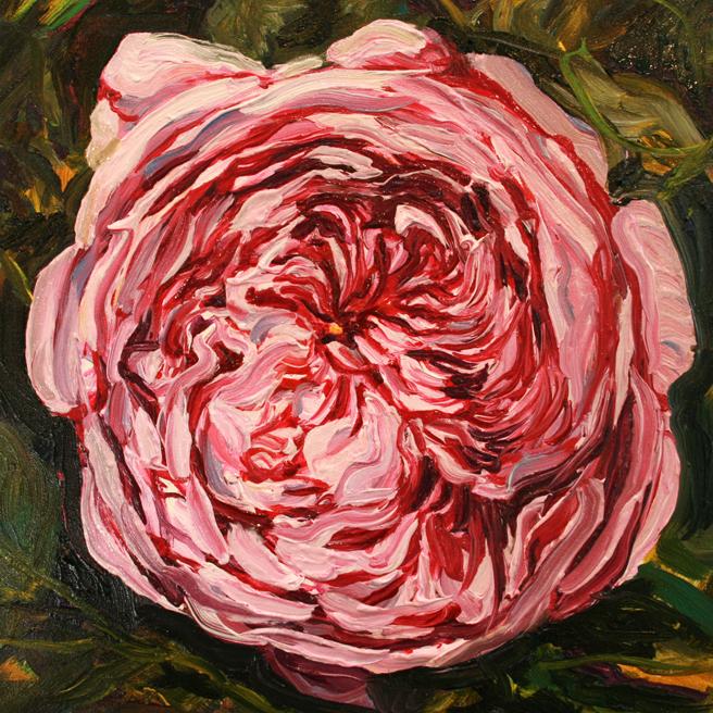 Rose Mandala IV in progress Marie Cameron 2013 6