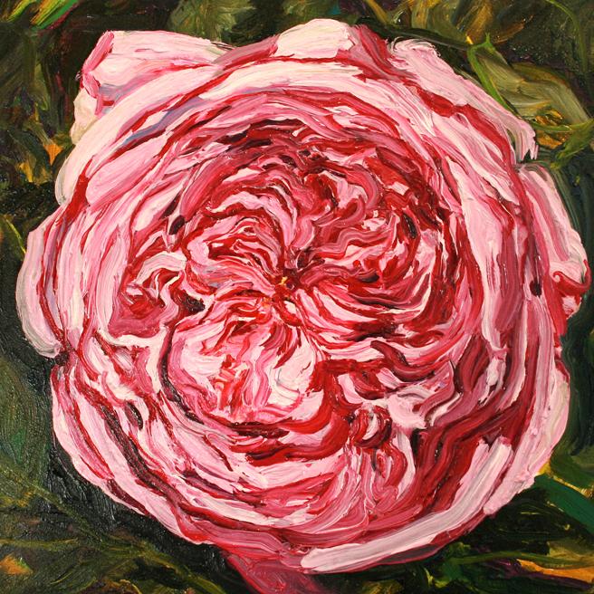 Rose Mandala IV in progress Marie Cameron 2013 7