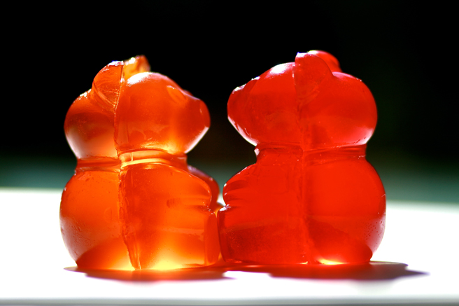 Gummi Bear Gaze - photo Marie Cameron 2013