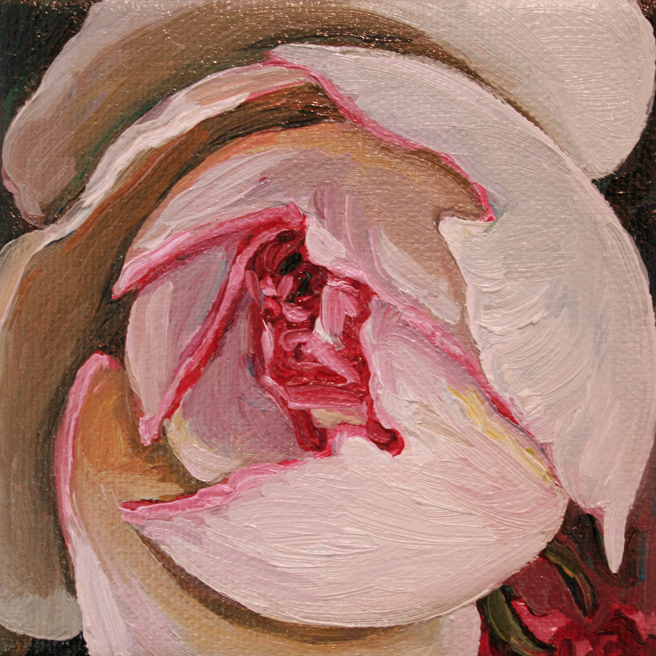 Painting Rosebud I Marie Cameron oil on canvas 4x4in 2013 4
