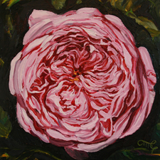 Rose Mandala IV Marie Cameron 6x6 oil on board 2013 sm