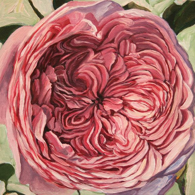 Rose Mandala I -  Marie Cameron - oil on canvas - 6x6in - 2013