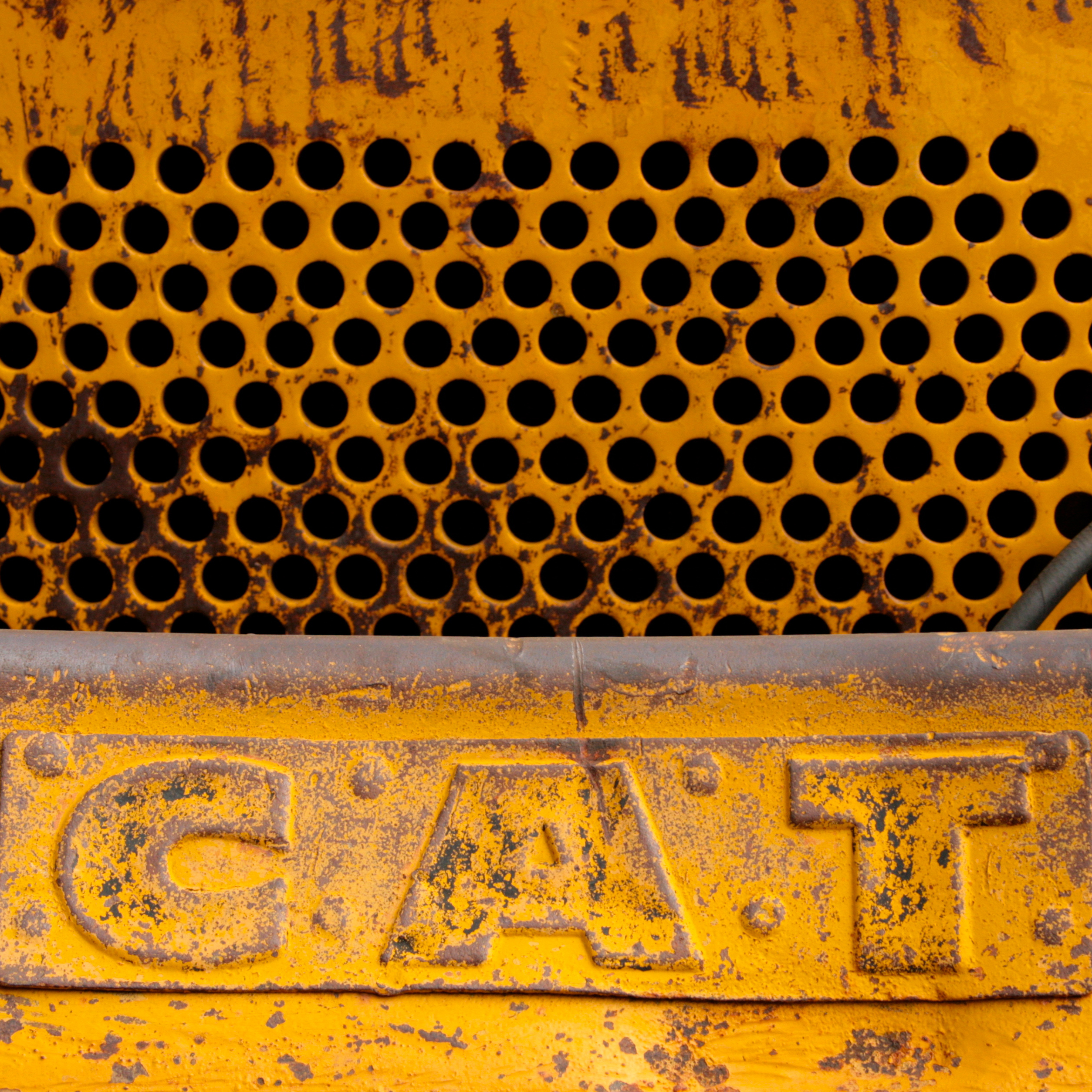 Snowplow detail - Cat, Marie Cameron 2014