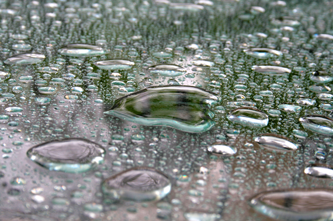 Pooling Rain - Marie Cameron 2014