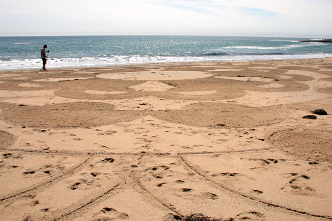 Beach Drawing, Santa Cruz - photo Marie Cameron 2014