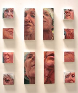 SVOS 2014 - Carol Greene - Face Scapes