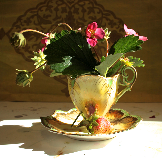 Chubu Demitasse with Strawberries  (yellow and green)- photo Marie Cameron 2014