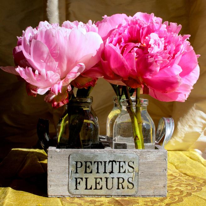 Peonies - Petites Fleurs 1- photo Marie Cameron 2014