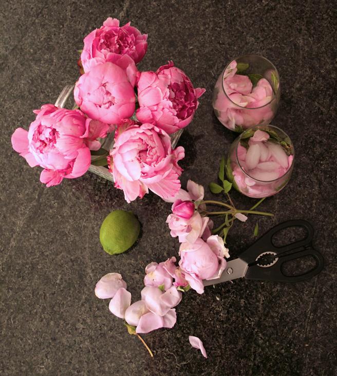 Peonies - Petites Fleurs 4- photo Marie Cameron 2014