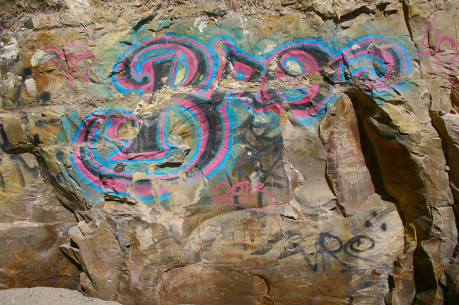 Day-tripping Colorful Tagging Shark's Tooth Cove, Davenport - photo Marie Cameron 2014