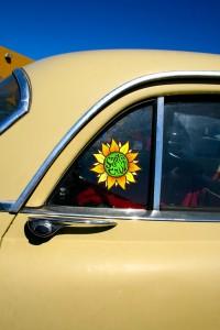 Day-tripping  Santa Cruz sticker Davenport - photo Marie Cameron