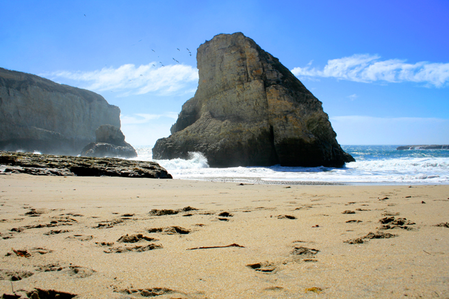 Day-tripping Shark's Tooth Cove, Davenport - photo Marie Cameron 2014