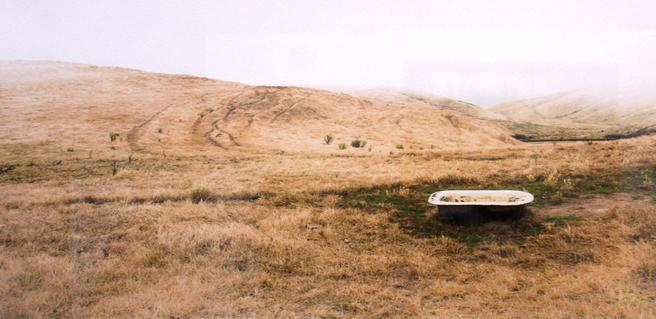 PAL Land, Sea and Urbanscapes 10-14 -  Lisa Ellis Sunbathing Photography