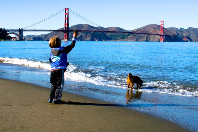 Golden Gate Bridge, Boy and Dog -  photo Marie Cameron 2014