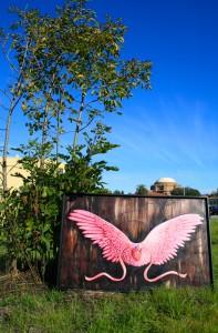 Presidio - Take it Go Flying  (Palace of Fine Arts) photo Marie Cameron 2014