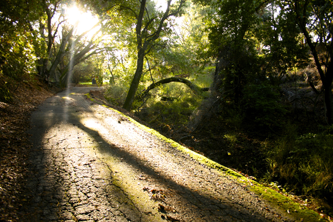 Between the Rains…sun on the road 2014