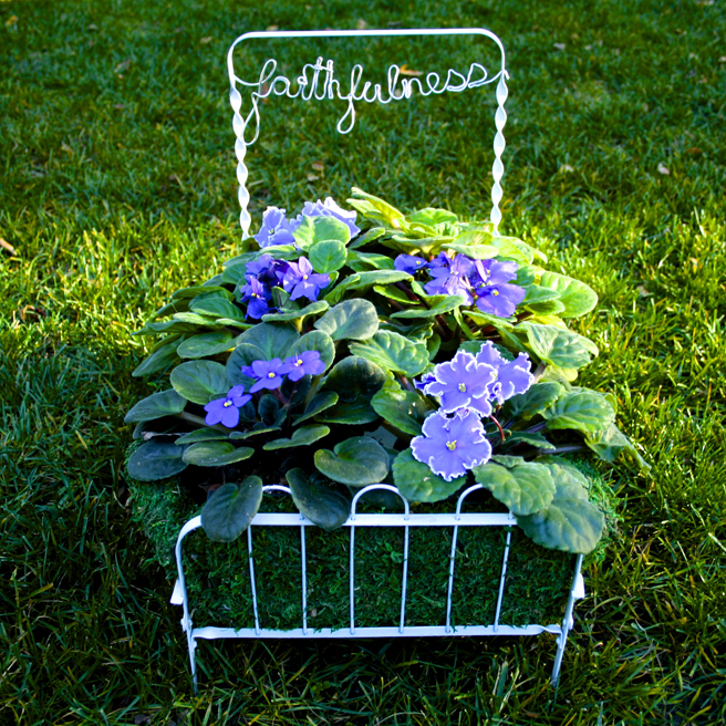 Faithfulness - a bed of violets - Marie Cameron (square) 2015