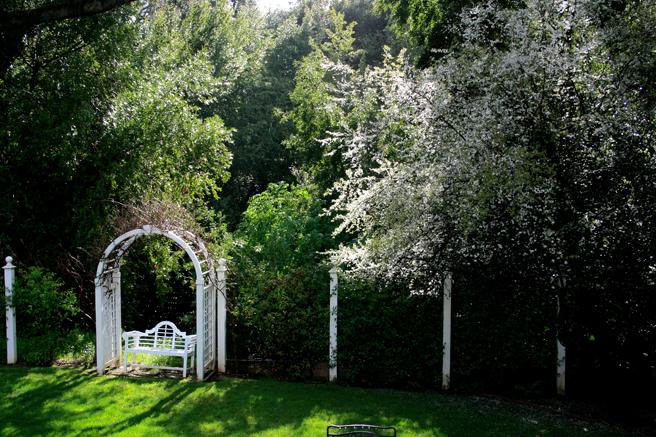 Plum Blossoms and Arbor- Marie Cameron 2015