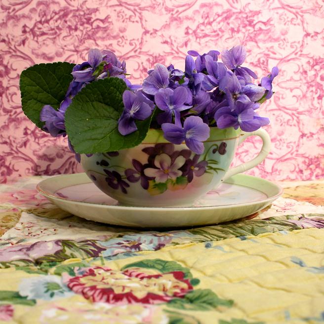 Violet Tea (sans oiseaux) I - Marie Cameron 2015