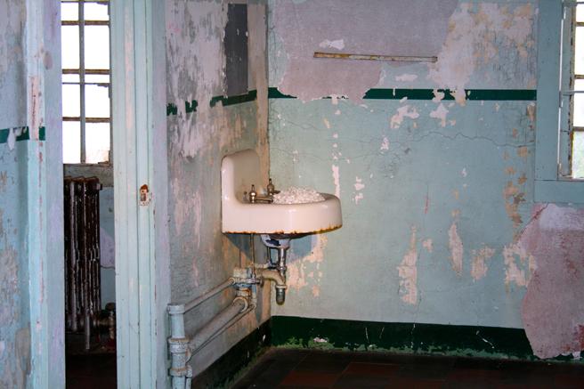 Ai Wei Wei - Blossom - Alcatraz