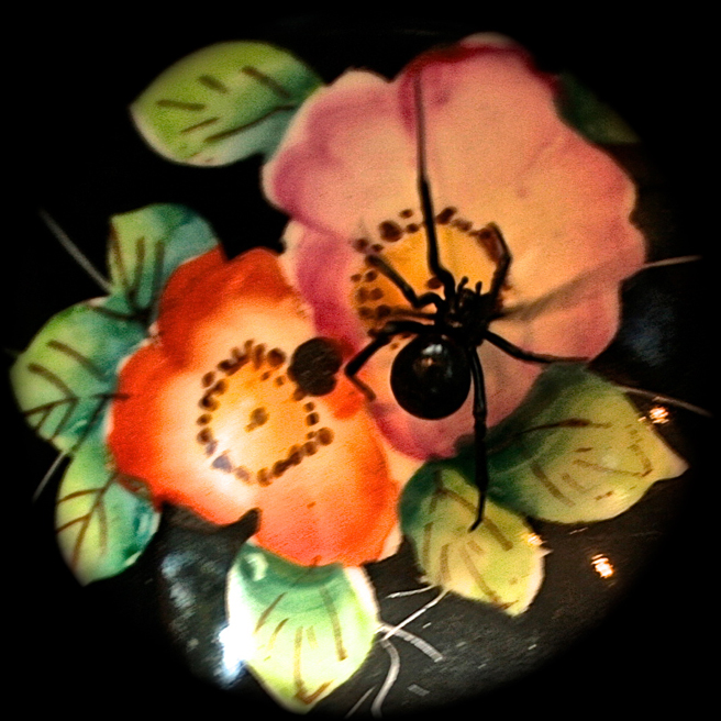 Black Widow on Teacup Roses I Photograph - Marie Cameron 2015