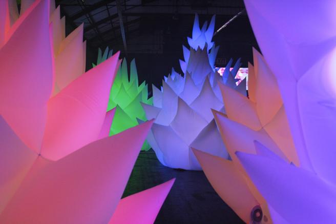 Maker Faire - Inflatables- photo Marie Cameron 2015