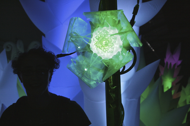 Maker Faire - Opening Flower - photo Marie Cameron 2015