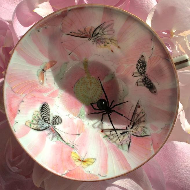 Widow and Butterflies 1 - Marie Cameron - 2015